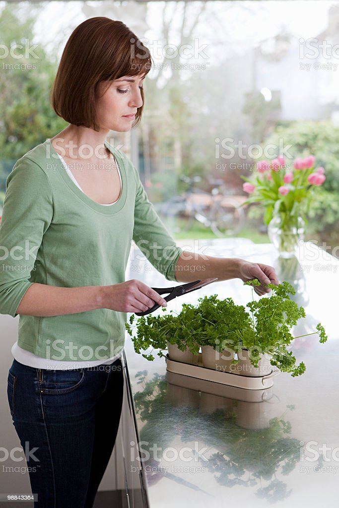Woman cutting herbs royalty-free stock photo