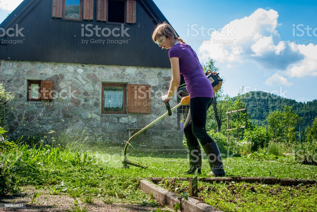 Woman Cutting  The Lawn  With  Weed  Trimmer stock photo