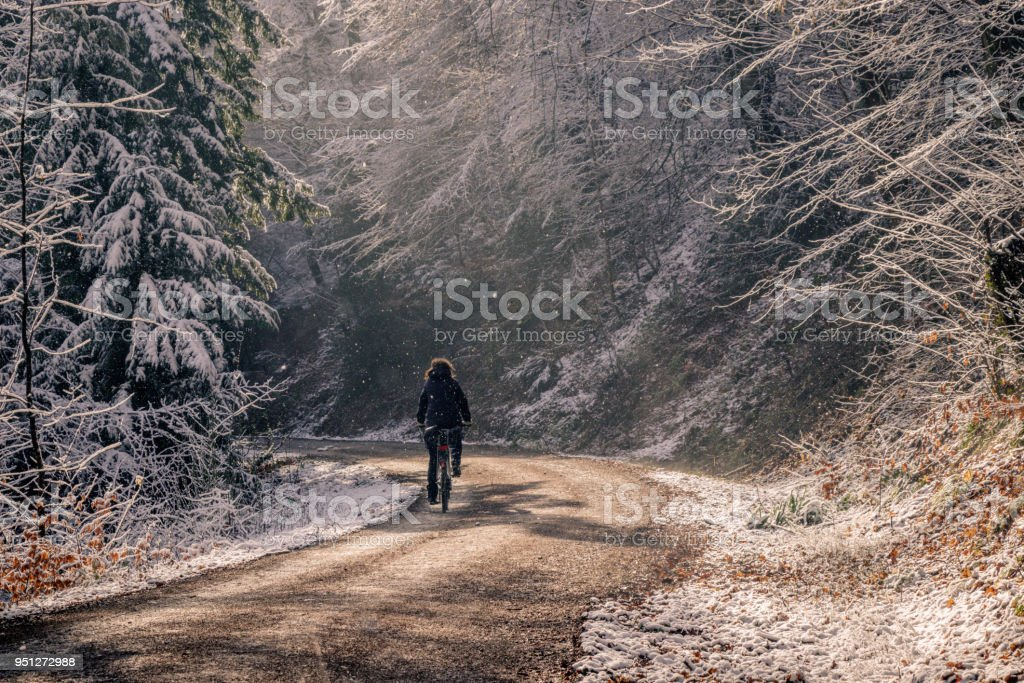 A woman cycling on an unpaved forest road on a cold winter day. The fresh snow is falling from the trees and the sun breaks through. This creates a fantastic atmosphere in the woods. A woman cycling on an unpaved forest road on a cold winter day. The fresh snow is falling from the trees and the sun breaks through. This creates a fantastic atmosphere in the woods. Adult Stock Photo