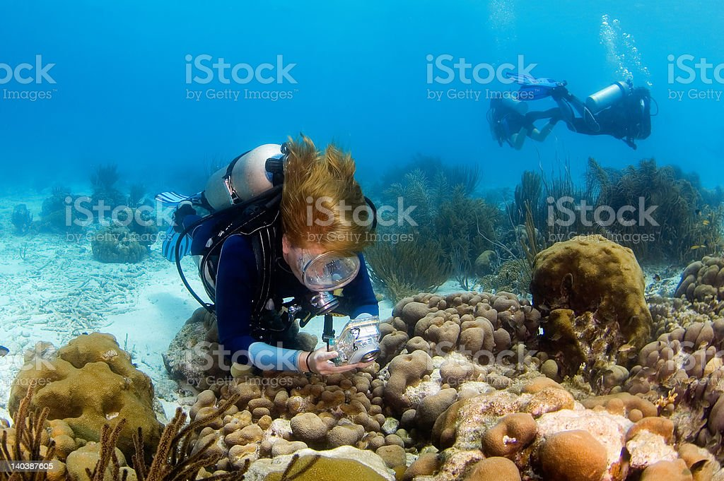 Woman diver photographing the reef stock photo