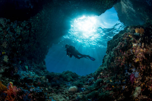 woman diver underwater at the entrance of a cave with sunrays stock photo
