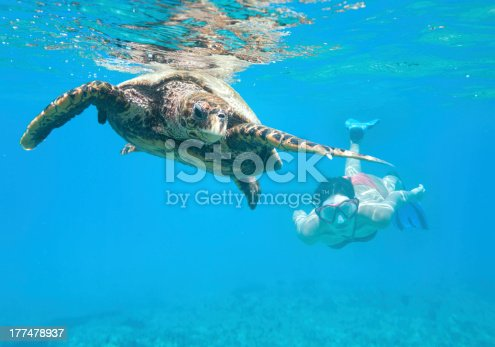 Very lucky shot of a woman swimming with an Hawksbill Sea Turtle (Eretmochelys imbricata) in the Ocean. Nikon D3X + Underwatercase (XXXL)