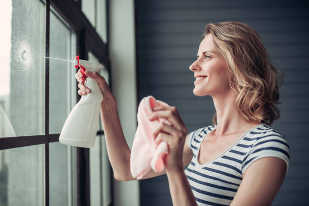 Woman doing cleaning at home stock photo