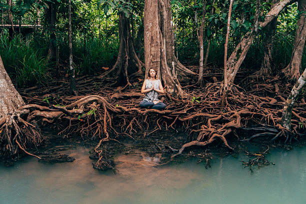 woman doing yoga near the river in tropical forest - tree roots stock pictures, royalty-free photos & images