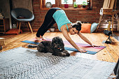 istock Woman Doing Yoga with her Dog at Yoga Studio 1141209606