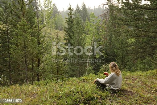 Woman drinks morning coffee. Forest distant, Alberta