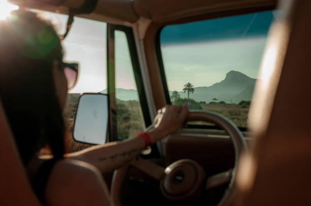 Woman driving a 4x4 off desert road stock photo