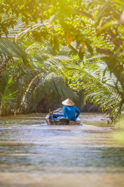 woman driving a boat in the mekong delta - mekong river stock pictures, royalty-free photos & images
