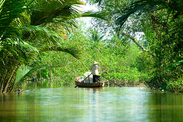 woman driving a boat in the mekong delta. vietnam. - mekong river stock pictures, royalty-free photos & images