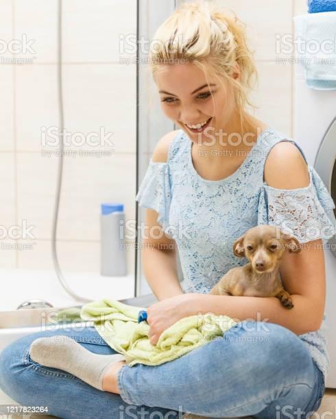 Woman drying dog after bath picture id1217823264?b=1&k=6&m=1217823264&s=612x612&h=ltys9sraffvqdubtwhudkecyqum76aalck6rvzrhrik=