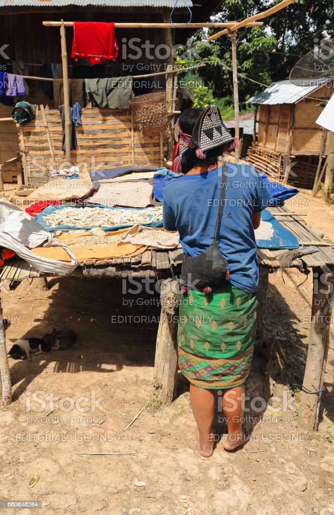Woman drying food. Akha Ya-Er hill tribe. BanHouayPhod-Phongsali province-Laos. 3728 stock photo