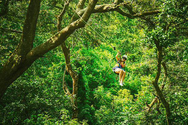 woman during a Canopy Tour Costa Rica woman in her 40s doing a Canopy Tour Costa Rica, zip lines between trees. zip line stock pictures, royalty-free photos & images