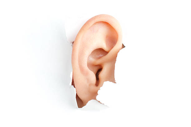 woman ear - ear stock photos and pictures