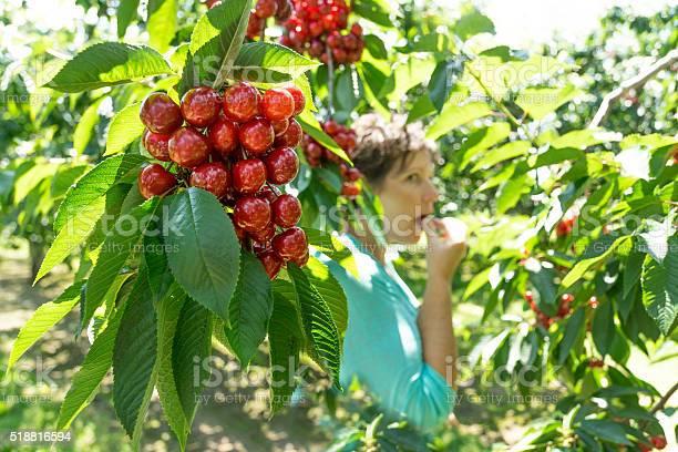 Photo of Woman Eats Cherry