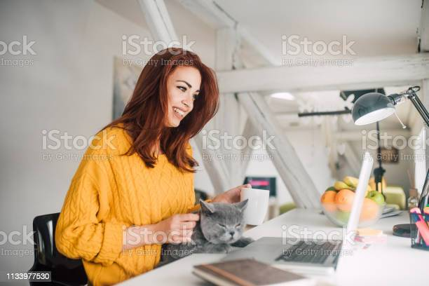 Woman electronic banking and petting a cat picture id1133977530?b=1&k=6&m=1133977530&s=612x612&h=phkq32l8nnwywe qlznt9mdpmgn0p ansot6yde5klc=