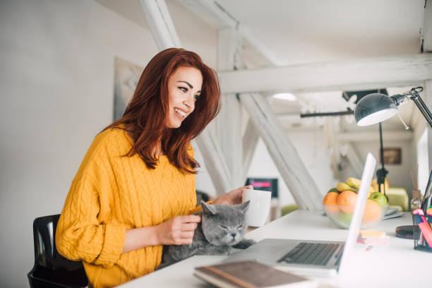Woman electronic banking and petting a cat picture id1133977530?b=1&k=6&m=1133977530&s=612x612&w=0&h=cm5juqs qngkddlt5rsiuhocrzkqrmzjdhubxpd0e0w=