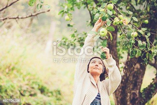 istock Woman Enjoying in her Garden 492704206