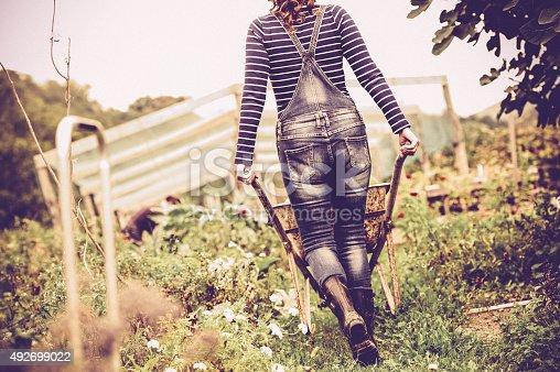istock Woman Enjoying in her Vegetable Garden 492699022
