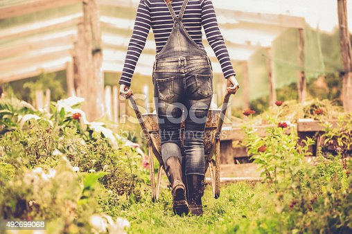 istock Woman Enjoying in her Vegetable Garden 492699068