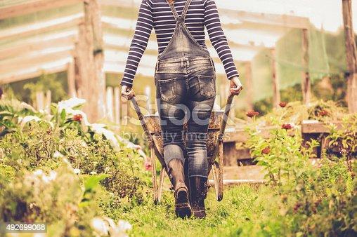 istock Woman Enjoying in her Vegetable Garden 492699068