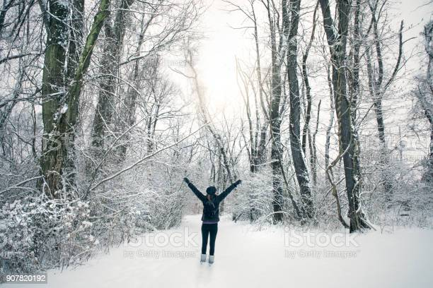 Woman Enjoying Snow Covered Forest Stock Photo - Download Image Now