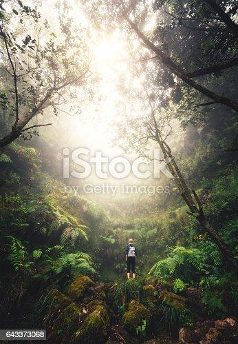 Young woman enjoying nature while hiking on Madeira Island (Levada do Caldeirão Verde).
