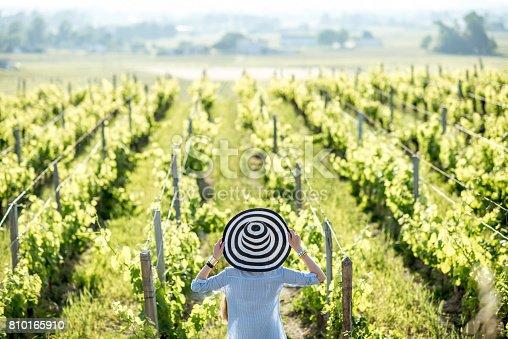 istock Woman enjoying the vineyards 810165910