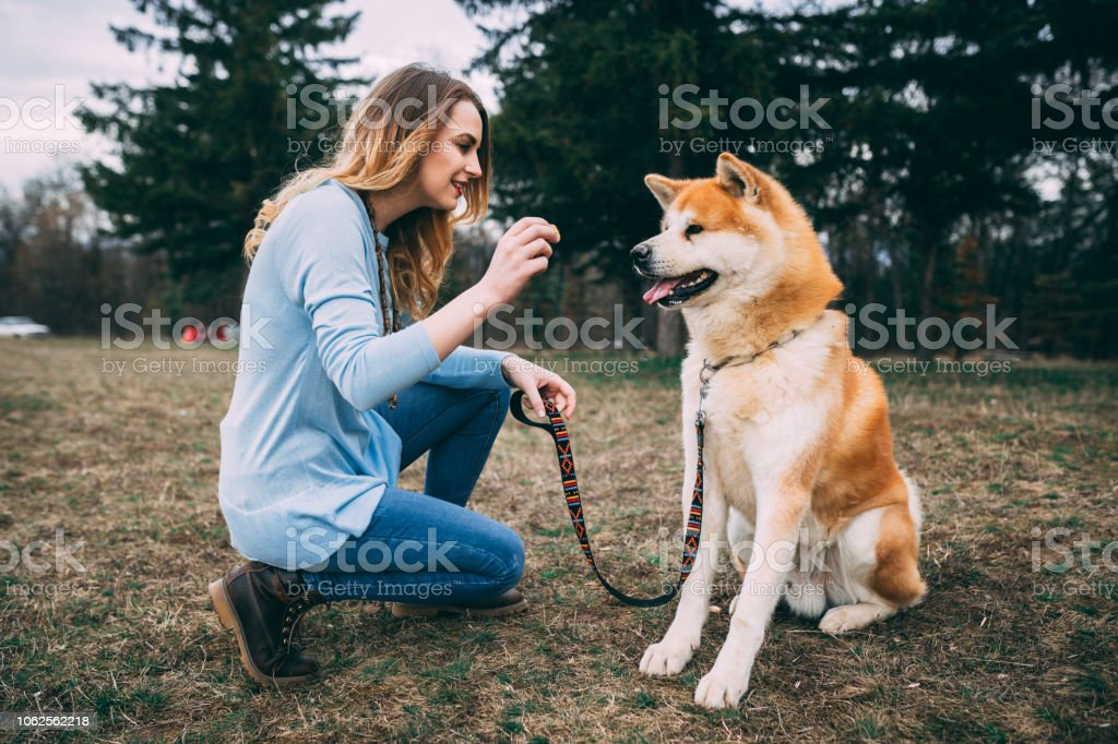 Woman enjoying time with her pet dog in the public park stock photo