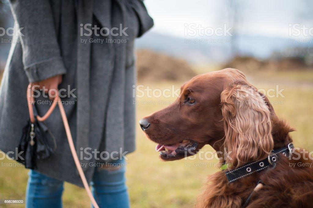 Woman Enjoying Time with Pet Dog stock photo