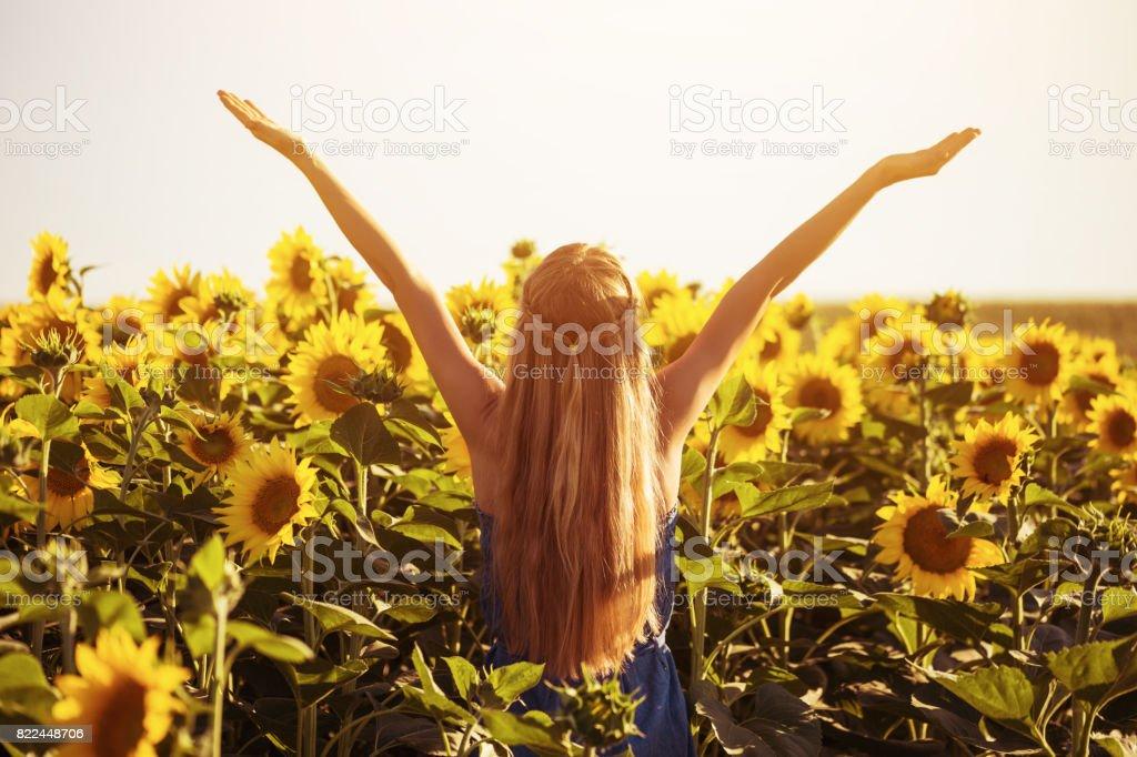 Mulher gosta de no campo de girassol - foto de acervo