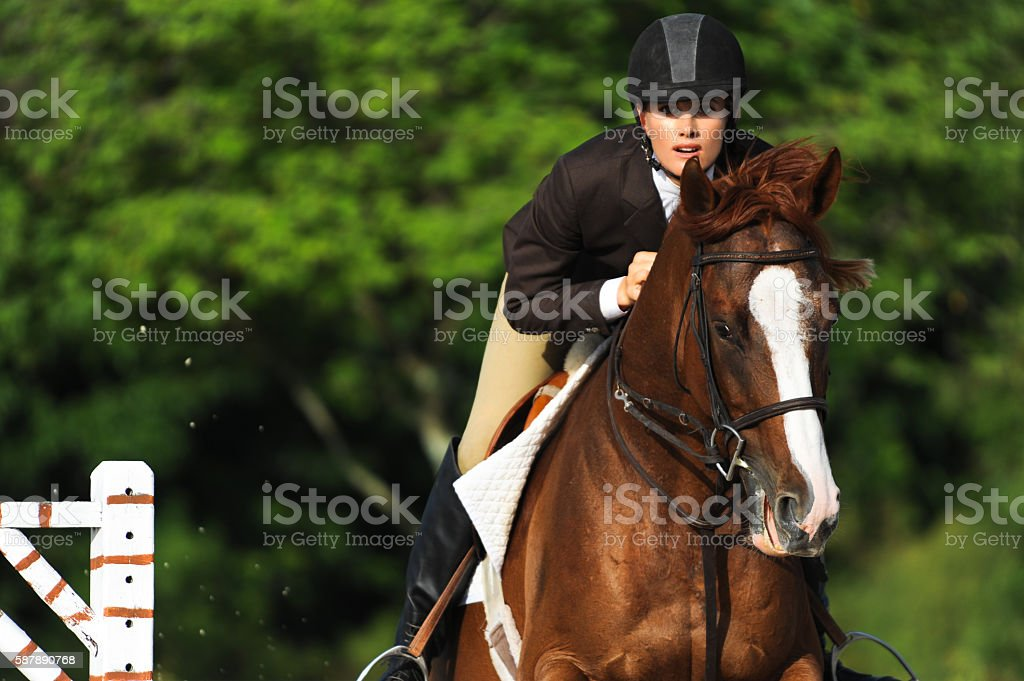 Woman Equestrian Riding Jumping on Show Horse stock photo