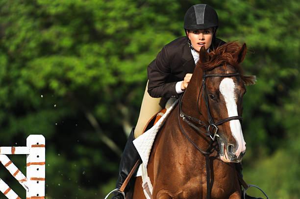 woman equestrian riding jumping on show horse - hästhoppning bildbanksfoton och bilder