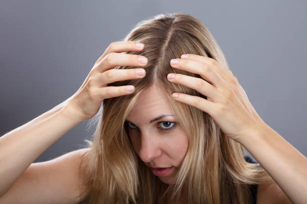 Woman Examining Her Hair Blonde Young Woman Examining Her Hair Over Gray Background human scalp stock pictures, royalty-free photos & images