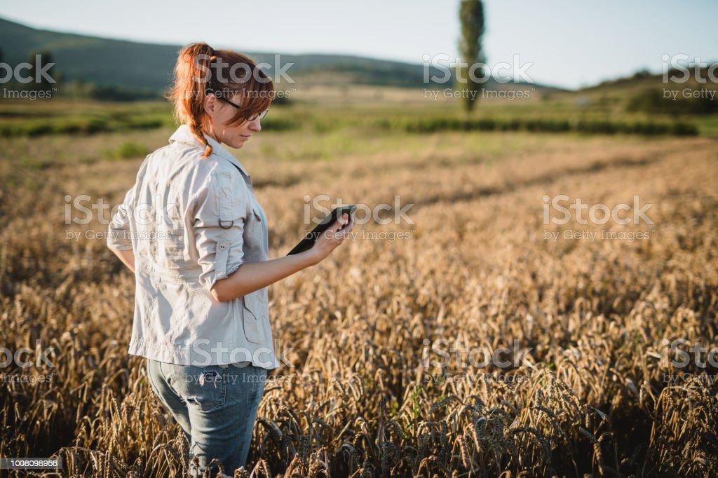 Femme en examinant dans le domaine - Photo
