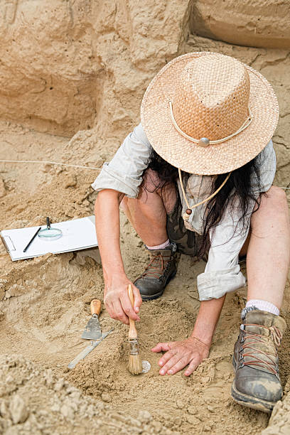 Woman excavating something at an archaeological site stock photo