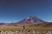 Young woman go looking at guanacos at colorful volcanic landscape of Atacama region in Chile