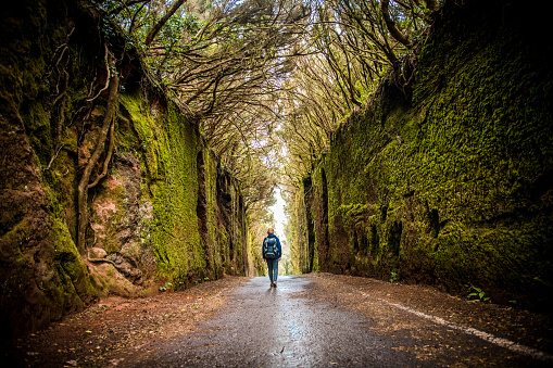 Woman exploring green laurel forest tunnel road