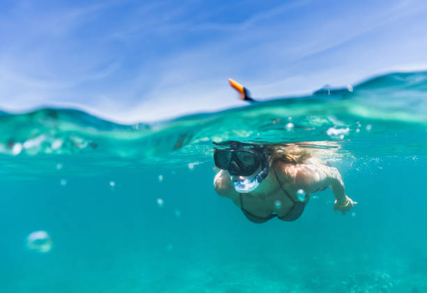 woman exploring the sea while snorkeling in summer day. - underwater diving stock photos and pictures