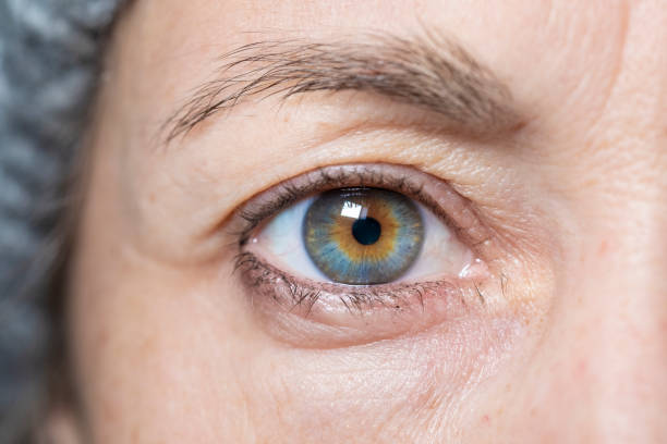 woman eye close up - eyelid stock pictures, royalty-free photos & images
