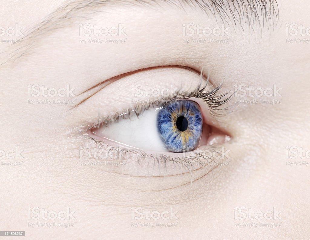 woman eye closeup royalty-free stock photo