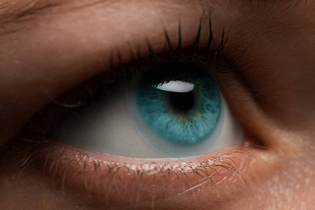 Woman eye with contact lens applying, macro. Blue dilated pupil, stock photo