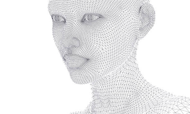woman face in wireframe lines isolated on white. stock photo