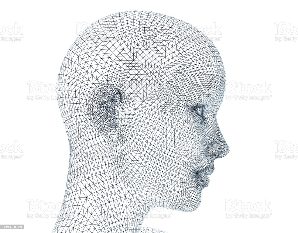 Woman Face In Wireframe Lines Isolated On White Stock Photo & More ...