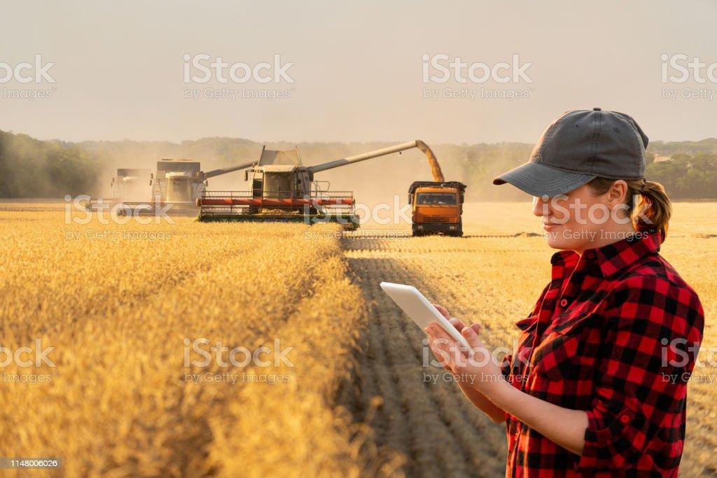 婦女農夫與數位平板電腦 - 免版稅一個人圖庫照片