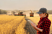 Woman farmer with digital tablet on a background of harvesters. Smart farming concept.