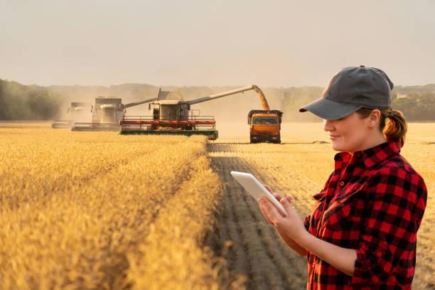 frauenfarmer mit digitalem tablet - farmer stock-fotos und bilder
