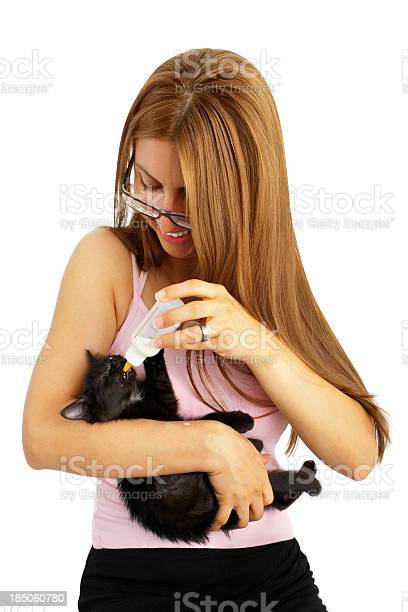 Woman feed with bottle a cute kitty picture id185060780?b=1&k=6&m=185060780&s=612x612&h=uyvzkr9x0a5e41xcwvvbez0asimkxu7dpm65zefoie0=