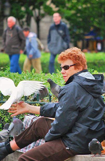 Woman feeding birds in public park, Paris stock photo