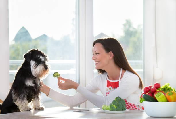 Frau Fütterung Hund mit Brokkoli – Foto