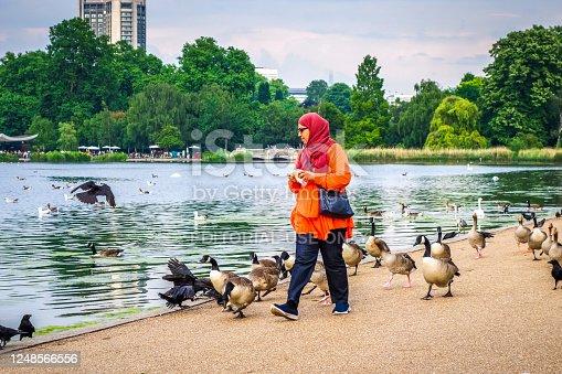 London/UK - June 3, 2017 - Woman feeding ducks in Hyde park